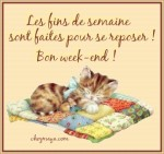 image chat bon week end patchwork.jpg